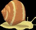 Image escargot