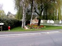Parterre de tulipes près du cimetière