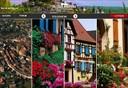 Village préféré des français Votez pour Eguisheim