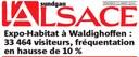 """Titre de l'article bilan sur l'expo-habitat 2010 dans """"l'Alsace"""""""