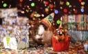Image anniversaire fête