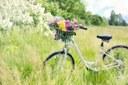 Image Vélo-fleurs