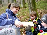 2013-04-05 CE1 - Les élèves cherchent des fleurs en forêt et les mettent sous presse