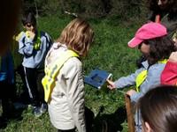 Lecture du panneau - le col vert