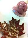 Feuille et pique-fleur