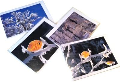 Cartes hiver 2010 de Jean-Paul Girard