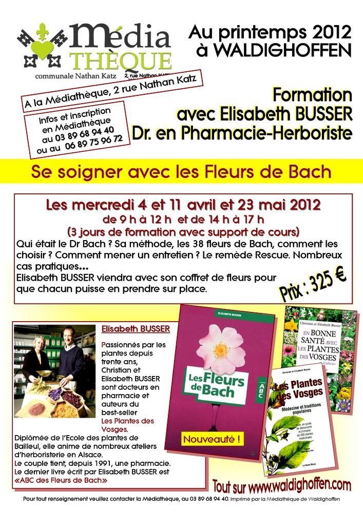 Affiche Elisabeth BUSSER printemps 2012