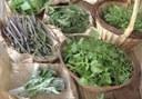 Visuel atelier cuisine verte