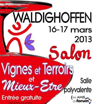 Salon vignes terroirs et mieux etre 2013 for Salon les amis