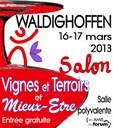 Affiche Salon VTME 2013