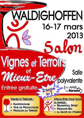 Salon VTME 2013 à Waldighoffen - page 1 du flyer