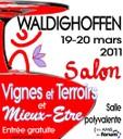 Affiche Salon Vignes et Terroirs et Mieux-Etre 2011