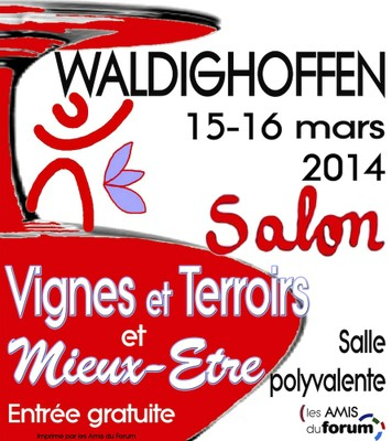 Salon vignes terroirs et mieux etre 2014 for Salon les amis