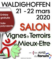 Affiche VTME 2020