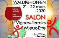Visuel Salon VTME 2020 pr flowview