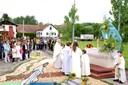 Fête Dieu Comm Paroisse 2 juin 2013-procession (7)