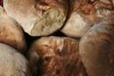 Ferme Muller pain gros plan