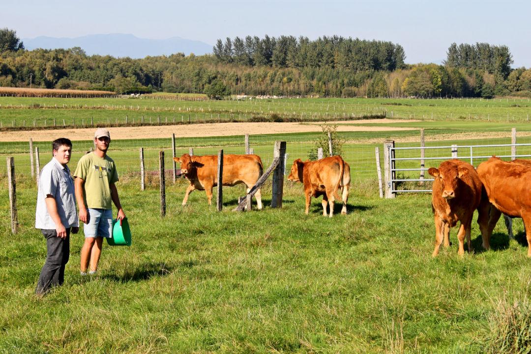 La ferme Grevillot à Brebotte
