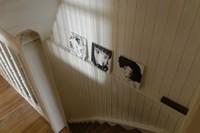 Descente d'escalier à Waldighoffen