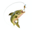 Image pêche à la truite